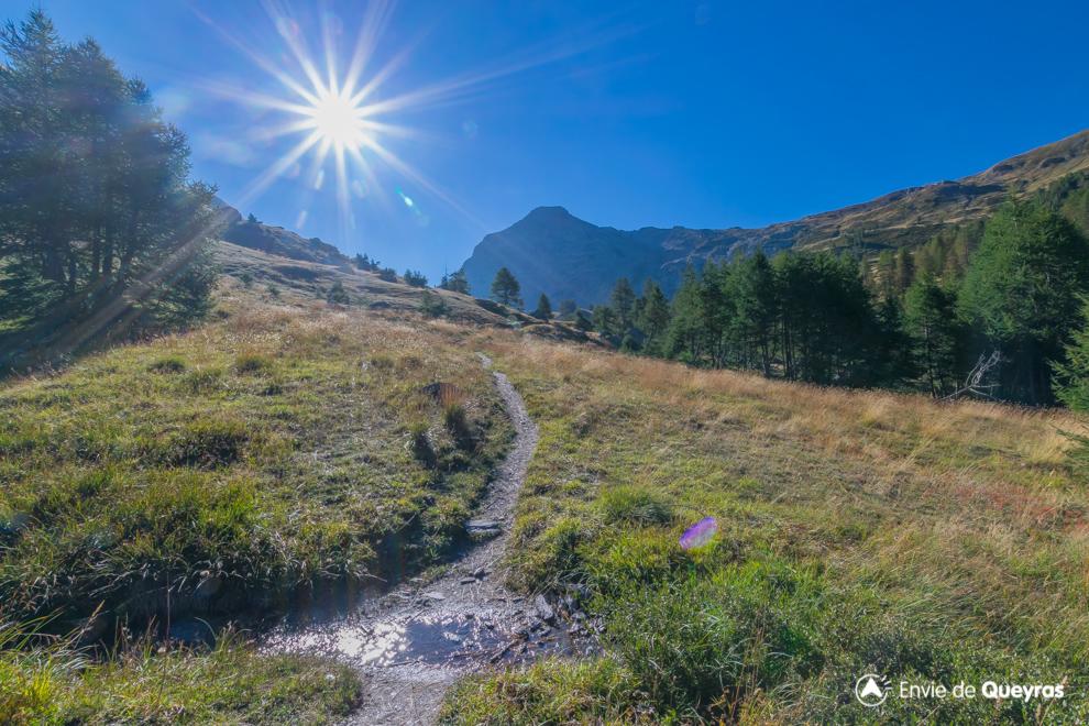 alpages humides sentier