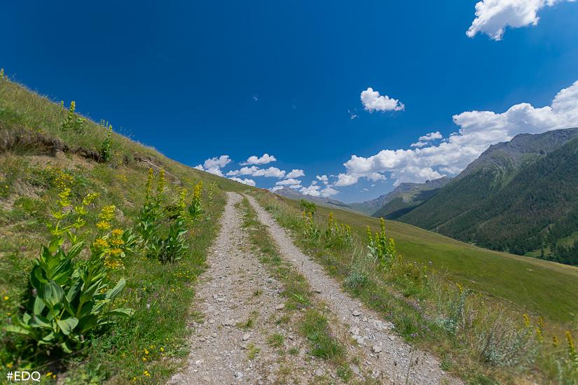 chemin accompagne de fleures vue aigue agnelle
