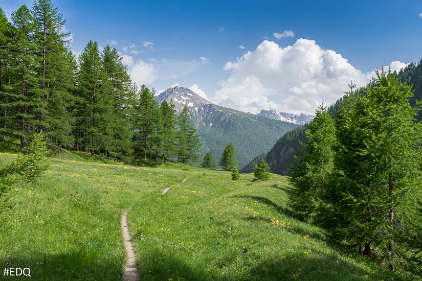 Sur le retour, en direction du hameau du Malrif : sentier et prairie verte