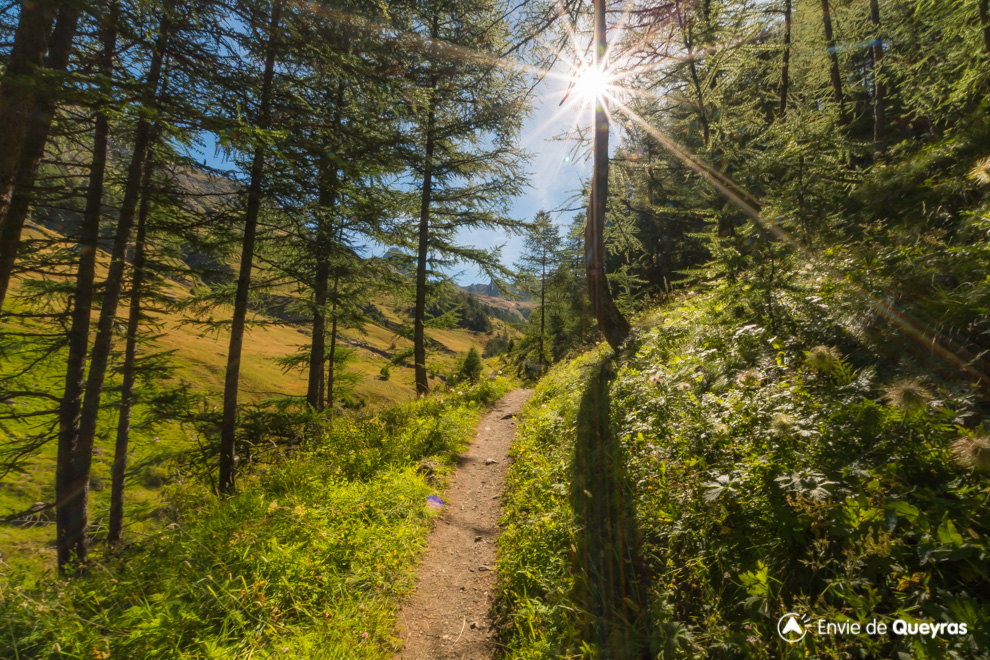 sentier valpreveyre lisiere foret rayons soleil