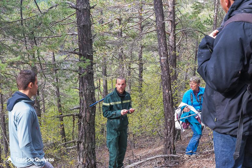 visite reserve assan avec onf lors inauguration age des arbres cernes
