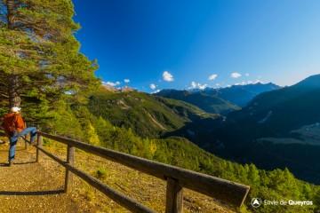 Belvédères et Forêt du Plateau de Roue