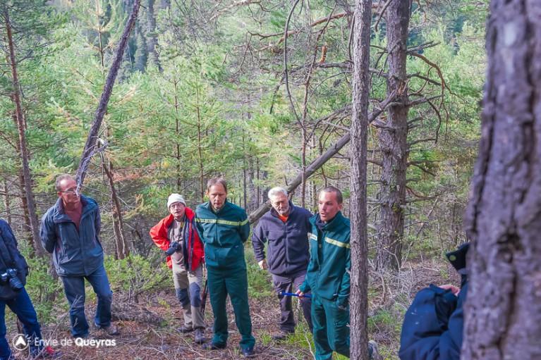 L'assistance est très attentive aux explications de l'ONF lors de la visite inaugurale du massif d'Assan
